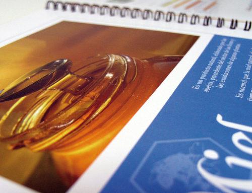 Diseño de catálogo de producto
